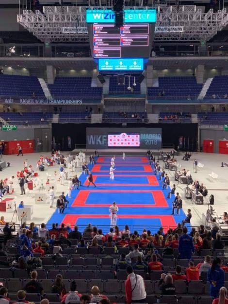 世界空手道選手権大会「卒業生の活躍」